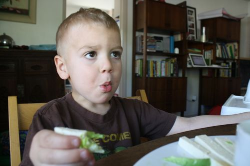 The Kid Eats Salad
