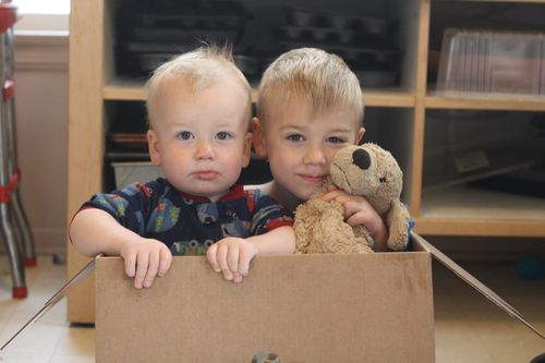 Desmond and Felix in a Box