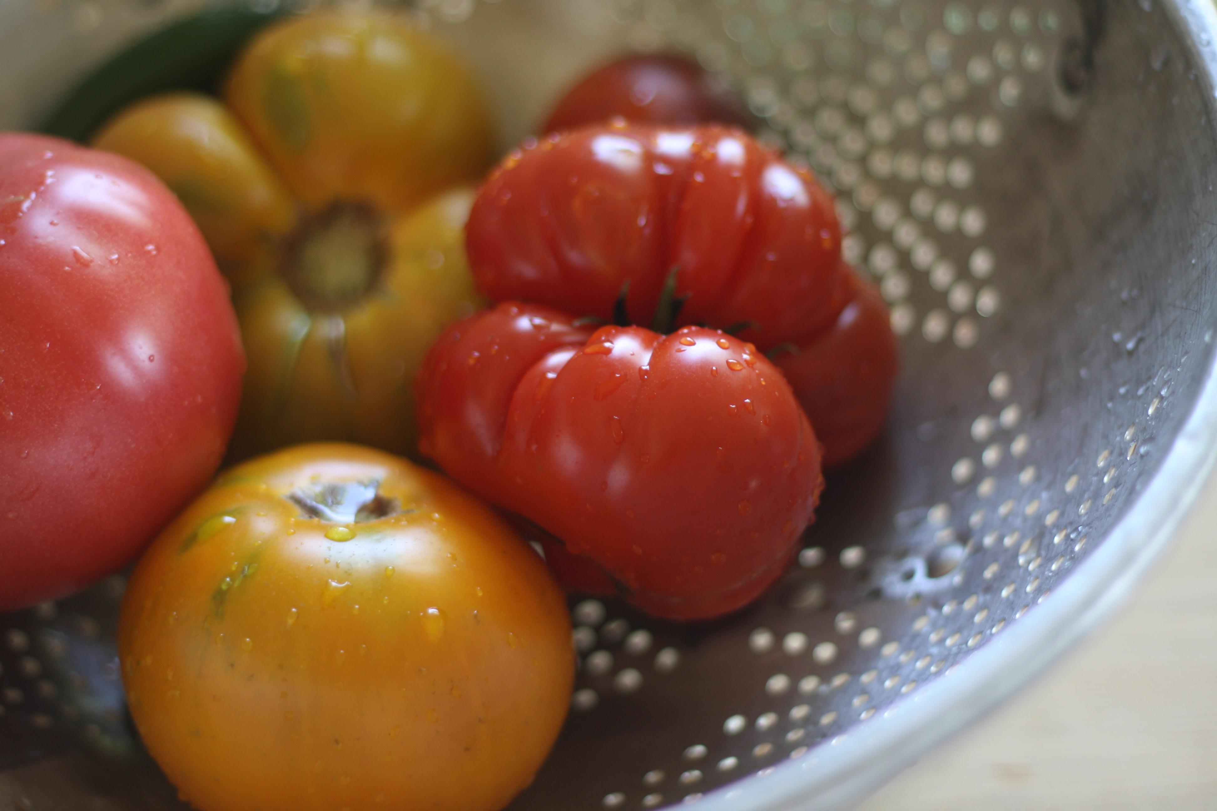 ... tomatoes of different heirloom tomato pico de gallo heirloom pico de